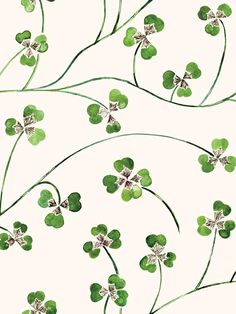 Lucky Leaf Clover Lawn, Four Leaf Clover, Cherry Blooms, Waves Wallpaper, Four Leaves, Art Society, Royal College Of Art, Original Wallpaper, Arts And Crafts Movement