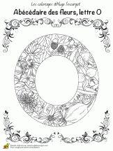abecedaire belles fleurs a lettre o