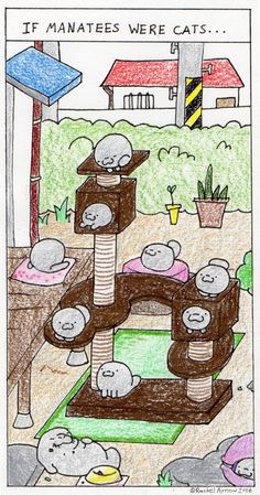 Happy Monday Man vs. Manatee! (:3) Here's the new comic by Rachel Arnow! http://mvsm.omnomzom.com/