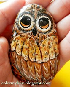 Color My Bliss: Owl painted on a rock