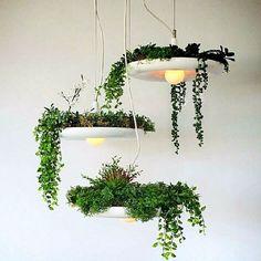 LED Hanging Garden Plant  Potted Lamp Creative Chandelier Light Home Decoration