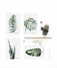 cards_urbanbotanical