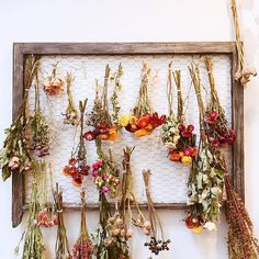 Never tossing flowers away again . Flower Wall Decor, Flower Farm, Drying Herbs, Dried Flowers, Flower Power, Flower Arrangements, Diy Home Decor, Bloom, Crafty