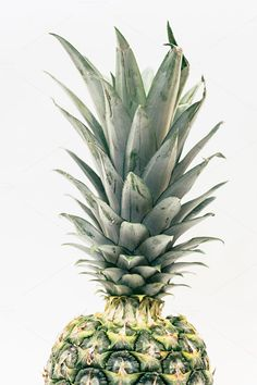 Partial Pineapple in Full Frame by Pineapple Shop on Pineapple Top, Pineapple Images, Fruit Splash, Fill The Frame, Color Inspiration, Art Prints, Portrait, Green, Shop
