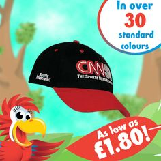 Check it out! Some new hats have been added to the site. These caps could lift your promotion to be aHEAD of the rest. http://www.promoparrot.com/brushed-heavy-cotton-caps.html #hat #cap #promo