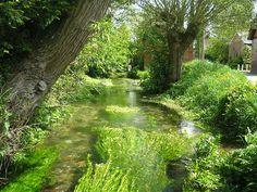 River Lambourne, Eastbury