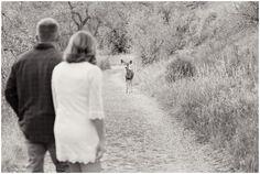 Plum Pretty Photography | Morrison Engagement Photography | Lair O' The Bear Park | Colorado Engagement Photos | Colorado Mountain Photography