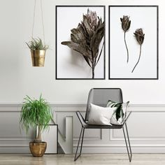 Minimalist Botanical Print, Dried Protea Print Set, Protea Print Set of Plant Print Wall Art, Fynbos Print, South African Wall Art Print South African Decor, South African Design, African Wall Art, Turquoise Walls, African Crafts, Art Prints For Home, Minimalist Decor, Minimalist Interior, Home Decor Online