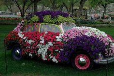 Garden Sculpture ! To Funny