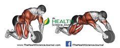 © Sasham   Dreamstime.com - Exercising for bodybuilding. Straightening simulator wheel