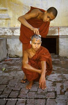 Best Monks Images  Buddha Buddhism Buddhist Monk A Monk Shaves Another Monks Head In Myanmar Dalai Lama Buddhist Monk  Terrorism Essay