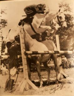 Docutainment Films Calls for Harry de Leyer and Snowman Footage to Tell the Untold Story of their Inspired True Story Most Beautiful Animals, Beautiful Horses, Beautiful Creatures, Horse Girl, Horse Love, Thoroughbred Horse, Dressage, Horse Ranch, Horse Quotes