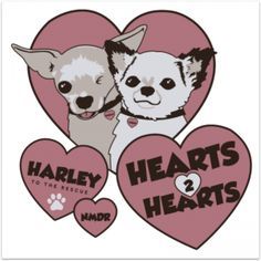 #NMDR My biggest hero, Harley, is heading out on another rescue! Dogs saving dogs!  Read about it here: http://milldogrescue.org/hearts-2-hearts/