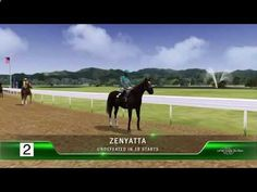 Zenyatta takes on horse racings greatest thoroughbreds in a virtual racing simulation