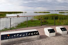 Meningie Lakefront Habitat Restoration Project / ASPECT Studios