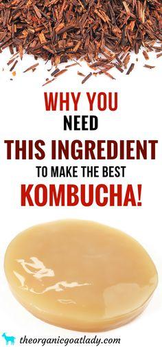 The Best Tasting Kombucha Tea Blend! - The Organic Goat Lady Best Kombucha, Kombucha Flavors, Kombucha Recipe, Best Probiotic, Kombucha Tea, Probiotic Foods, Fermented Foods, Fermented Tea, Kombucha Brewing
