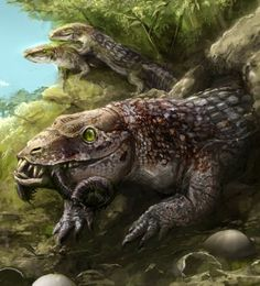 # BURU- Indian cryptid: a huge monitor like creature said to have existed but gone extinct. It lived in Ziro valley, India, which was mostly a marsh land and inhabited by burus. When the Apatani people arrived, they decided to drain the marsh and kill the burus. Most were killed and some went underground, presumably into the underground springs. Some might think the buru was actually a type of lungfish.