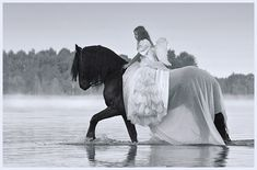 Horse & Girl.                                                                                                                                                                                 Mehr