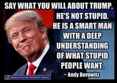 Humorous quotes, jokes and tweets skewering Republican presidential candidate Donald Trump from Louis CK, Andy Borowitz, Bill Maher, Stephen King, and others.: Andy Borowitz on Trump and Stupid People