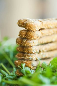 Pumpkin Apple Doggie Mint Treats - Freshen your dog's breath with these homemade dog treats. It's easy, healthy and cheap. It's a win-win!