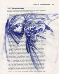 Penciled Bird. I think I'm crumbling in jealousy of this artist.