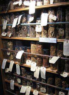 Herb pantry