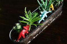 succulent garden: fun with dinosaurs for playroom area via thecreativemama.com