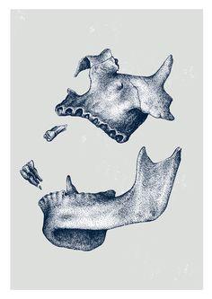 Screenprint limited edition of 25 copies. Skull that never hosted life. Graphic Design Art, Graphic Design Illustration, Tatuaje Breaking Bad, Skull Sketch, Dental Art, Quirky Art, Occult Art, Tattoo Flash Art, Dark Tattoo