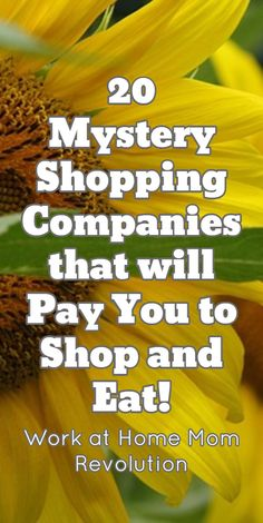 20 Mystery Shopping Companies that will Pay You to Shop and Eat! / Work at Home Mom Revolution
