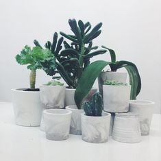 Marble planters in concrete. Selection of pots, vases and holders in white and grey marbelized cement