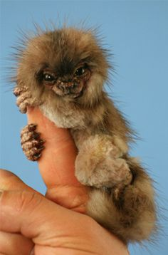ERMEHGERD!!!!!! Are you Kidding me? This is so freaking adorable. I must have one! The cutest little thang i have ever seen!!!! It's like baby one of the Wild things from Where the Wild Things Are...♥