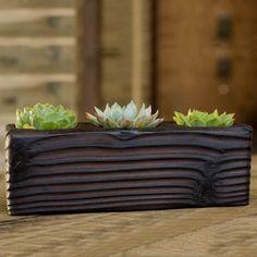 Triple Wood Succulent Planter in Flow