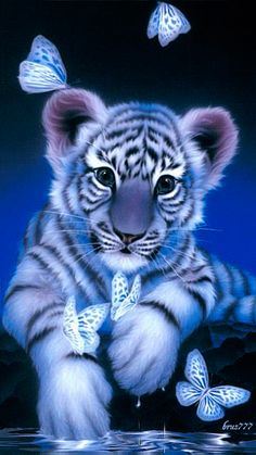 Tiger Cub & Butterflies GIF