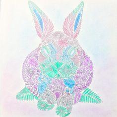 Rabbit Animalkigdom Crazy MillieMarotta MillieMarottas Milliemarottabooks Milliemarottaanimalkingdom Milliemarottasanimalkigdom Colouring Coloring