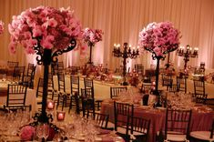 black and pink orchid wedding reception