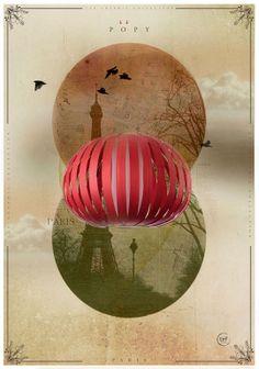 LZF Poppy-S  Illustration
