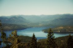 Priest Lake Idaho... If I ever come across some good money you know where to find me.