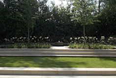 Berkshire Country Garden - London Garden Designer