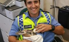 Cute Cop Adopts Kangaroo Joey | Care2 Healthy Living