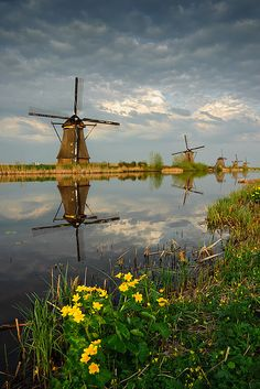 Kinderdijk, Zuid-Holland, Netherlands (photo by Philipp Klinger). 19 windmills from the century. Unesco World Heritage Site. Tilting At Windmills, Old Windmills, Cool Places To Visit, Places To Go, South Holland, Holland Netherlands, Reflection Photography, Le Moulin, Lake View