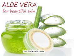 Aloe vera for beautiful skin - ♥ IndianBeautySpot.Com   ALOE FOR A WRINKLE-FREE SKIN Aloe vera is beneficial for aging skin and reducing the appearance of wrinkles. The gel penetrates deeply into the skin to remove dead cells, grow new ones, provide moisture, get rid of dryness and restore the skin's elasticity. Massage the gel all over the face, leave it on for 10-15mins and rinse off.