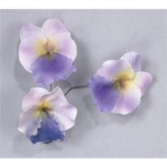 Large Pansies - Lavender   CaljavaOnline
