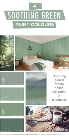 Turn your house into a home with this soothing green colour palette from BEHR Paint. Shades like Nature's Gift, Copper Patina, Gallery Green, and Pine Brook create peace, relaxation, and calmness in the rooms of your home. Click below to see how you can use these modern hues in your next DIY project.