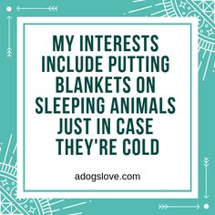 Sleeping Animals, Talking Animals, Dog Grooming Business, Dog Quotes Funny, Puppy Dog Eyes, Online Pet Supplies, Puppy Care, Pet Dogs, Doggies