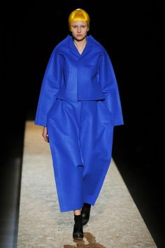 REALLY???    Comme des Garcons Fall 2012 - che bella silhouette!
