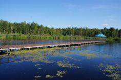 Orlovskoye Polesye. Russia.