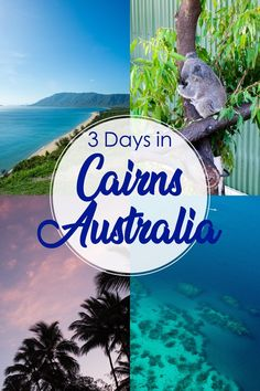 Itinerary for 3 Days in Cairns, Australia: Coral Reefs and Rainforests. Cairns is the gateway to both the Great Barrier Reef and the Daintree Rainforest. Sydney, Brisbane, Melbourne, Australia Travel Guide, Visit Australia, Australia Trip, Queensland Australia, Cairns Queensland, South Australia