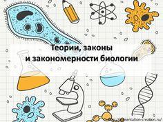 Презентация по биологии. Структурно состоит из трех частей:ТеорииЗаконыЗакономерностиВ презентации раскрыты все научные теории, представлены основные определения, обозначены ключевые научные...