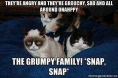 Grumpy Family!