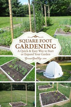 Square Foot Gardening | A Quick & Easy Way to Begin or Expand Your Garden | Grow a Good Life  | If you are just starting a garden or want to expand your growing space, the Square Foot Gardening method is worth considering. The beds are easy to build with no digging or tilling required.